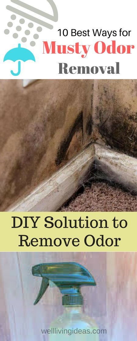 How To Get Rid Of Musty Smell 10 Best Ways For Musty Odor