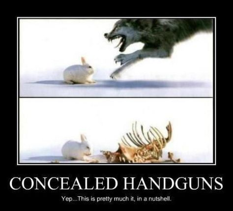 Concealed carry.