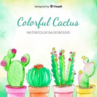Download Watercolor Cactus Background For Free In 2020 Cactus