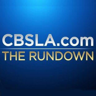 In Search Of A Basking Shark Our Reporter Finds A Few Things Equally Fascinating Cbs Los Angeles Kids Safe Los Angeles La County