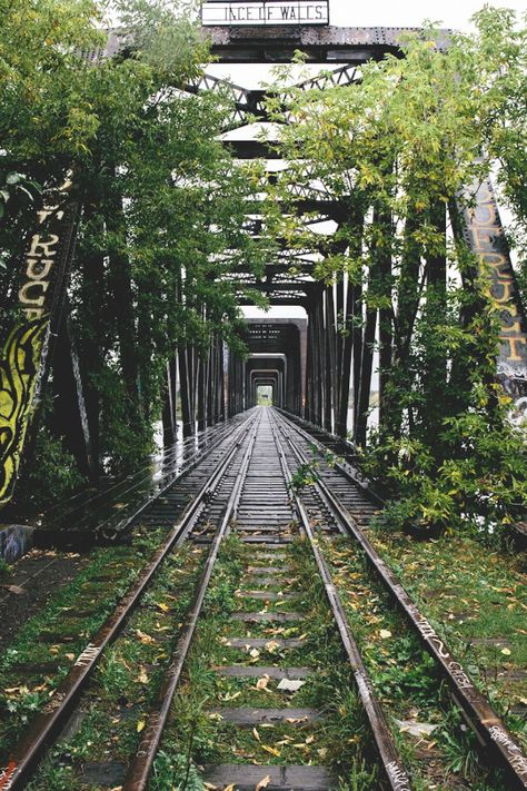 Abandoned railway track and bridge Abandoned Train, Abandoned Buildings, Abandoned Places, Railroad Bridge, Railroad Tracks, Train Pictures, Cool Pictures, Old Trains, Train Tracks