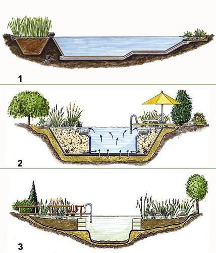 Tara Saved To Apartmentschwimmteich Hinein Ins Vergnugen Natural Swimming Pools Swimming Pond Natural Swimming Ponds