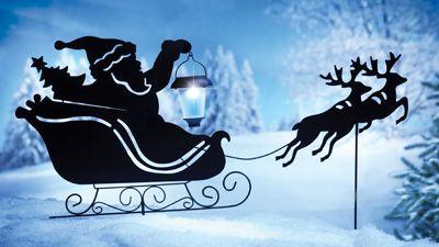 Santa and Reindeer Shadow Stakes
