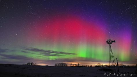 Northern Lights in Maine on January 25, 2012.    Paul Cyr Photography:  http://www.crownofmaine.com/paulcyr/olympus-daily-photos/
