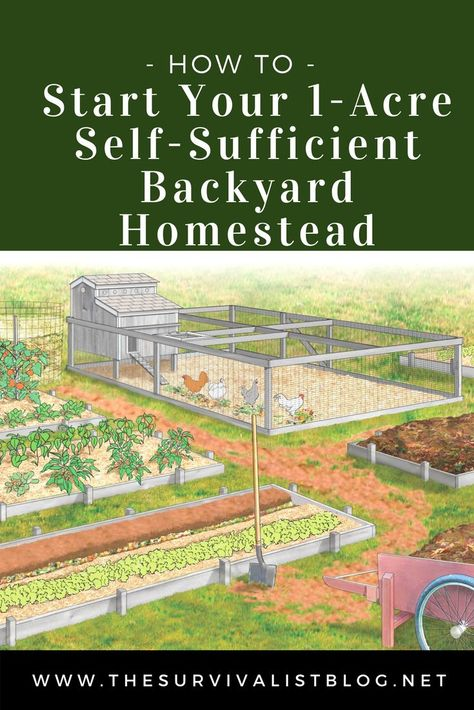 How to Start Homesteading on 1 Acre Contrary to popular belief you don't need a large plot of land to have a self-sufficient homestead. All you need is one acre and a plan. This is that plan - How to Start Your Self-Sufficient Backyard Homestead. Homestead Layout, Homestead Farm, Homestead Survival, Survival Prepping, Survival Shelter, Emergency Preparedness, Doomsday Survival, Survival Skills, Survival Food