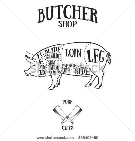 Butcher Cuts Scheme Of Pork Hand Drawn Illustration Of Vintage Style