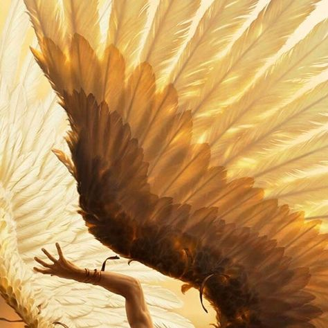 Victory of Samothrace discovered by hera. on We Heart It Apollo Aesthetic, Gold Aesthetic, Angel Aesthetic, Greek Gods And Goddesses, Greek Mythology, Character Aesthetic, Aesthetic Pictures, Fantasy, Characters