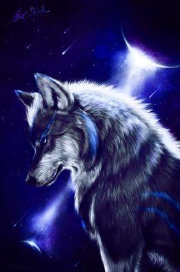 Dark Blue Wolf Wolf Pictures Wolf Wallpaper Wolf Artwork