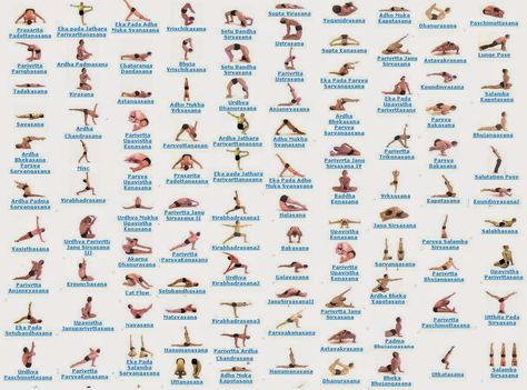 84 Classic Yoga Asanas Pdf Google Search All Yoga Poses Hatha Yoga Poses Yoga Poses Names