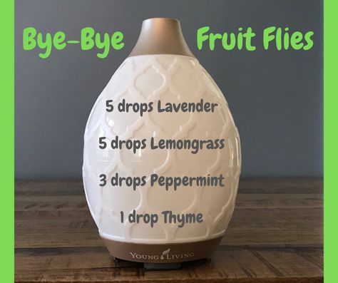 Essential Oils diffuser blend to rid your home of fruit flies!