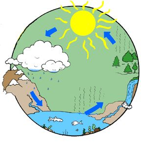 Lesson plan for an experiment that helps students understand what happens during the water cycle.