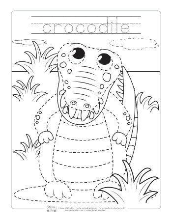 Safari And Jungle Animals Tracing Worksheets Animal Worksheets Animal Activities Zoo Crafts Animal tracing for kindergarten