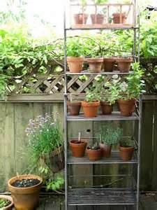 Baker's rack is great for indoor or outdoor pot storage. Could use to grow from seed indoors.