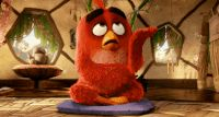 Facepalm GIF by Angry Birds - Find & Share on GIPHY