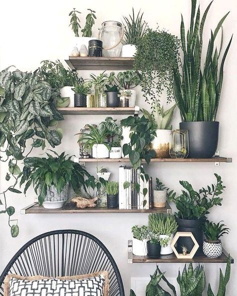 Amazing House Plants Indoor Decor Ideas Must 45 Vertical Wall Planters, Indoor Wall Planters, Indoor Plant Shelves, House Plants Decor, Bedroom Plants Decor, Plant Wall Decor, Home Plants, Plant Rooms, Garden Bedroom