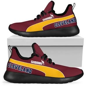 Cleveland Cavaliers sneakers, custom made to order and