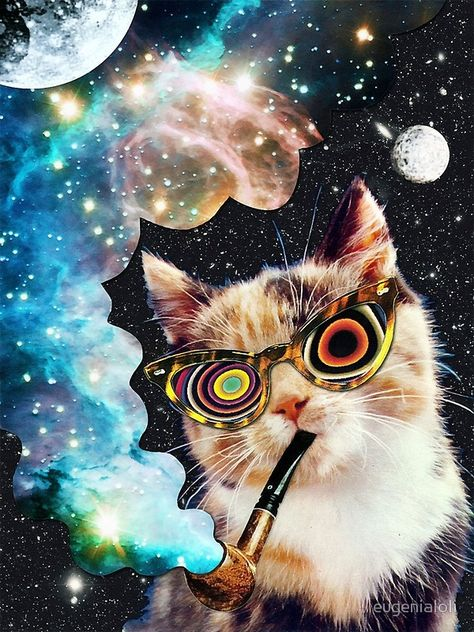 """High Cat"" Art Prints by eugenialoli 