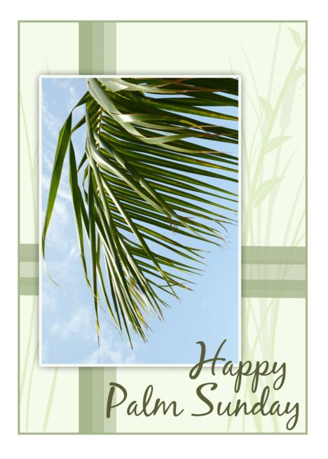 Palm Sunday Palm Photo Card Ad Sponsored Sunday Palm Card Photo Happy Palm Sunday Palm Sunday Photo Cards