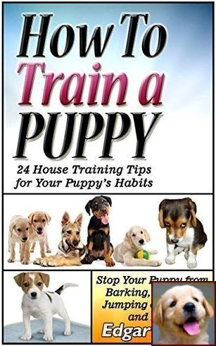 How To Stop Dog Aggression Dog Aggression Training Dog Clicker