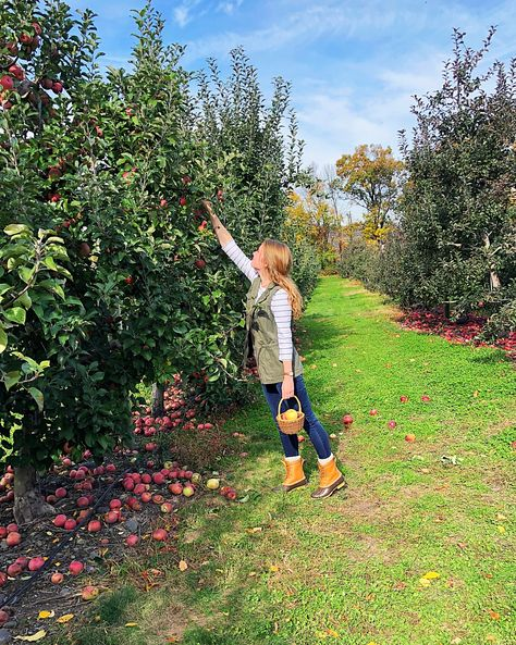 Bean boots...bean boots outfit...apple picking... fall outfit...green vest...duck boots #beanboots #applepicking #falloutfit #greenvests