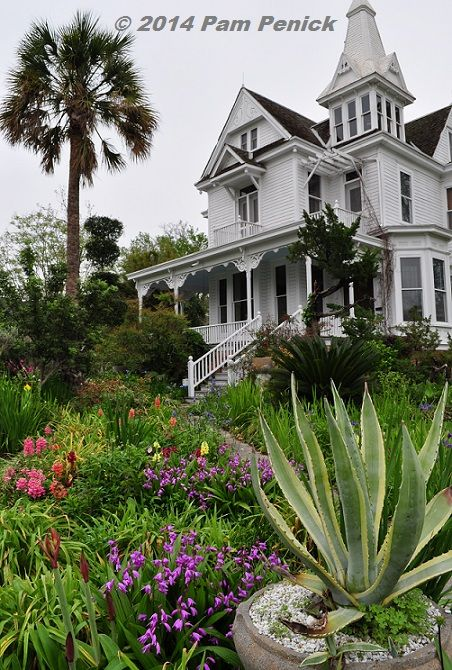 Drive By Gardens: Mansfield House And Garden In Houston Heights | Digging |  Digging: Cool Gardens In A Hot Climate | Pinterest | Gardens, Sago Palm And  ...