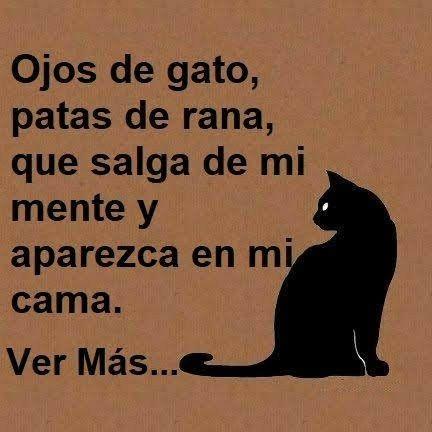 Pin By Saray Vasquez On De Amor Y Otros Vicios Funny Quotes Sweet Memes Funny Love