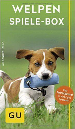 Spiele Fur Welpen Welpen Hundchen Training Und Welpen Erziehen
