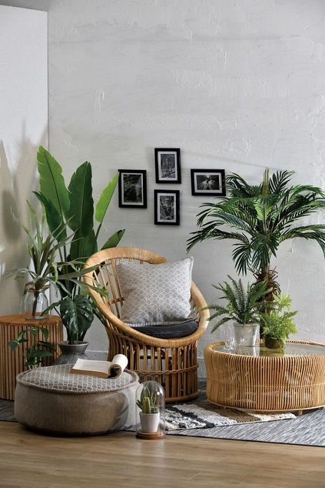 Find Out 15 Incredible Indoor Plants Decor Ideas Simdreamhomes Indoorplantsdecorideas Indoorplantsdecor Plant Decor Indoor House Plants Decor Plant Decor