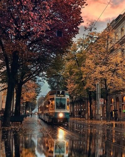Zürich tramway on a rainy night. Best Travel Insurance, Travel Insurance Companies, Zurich, Autumn Aesthetic, Travel Abroad, Rainy Days, Rainy Night, Land Scape, New England