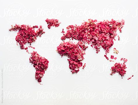 Clearly visible continents on a handmade world map made of pinkish flowers and petals by beatrixboros | Stocksy United