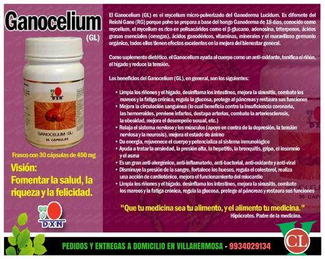 vitaminas y minerales de los hongos