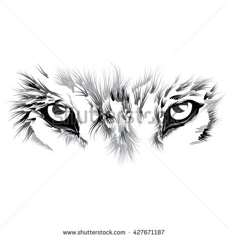 Wolf S Face Wolf Eye Tattoo Wolf Face Lion Tattoo Sleeves