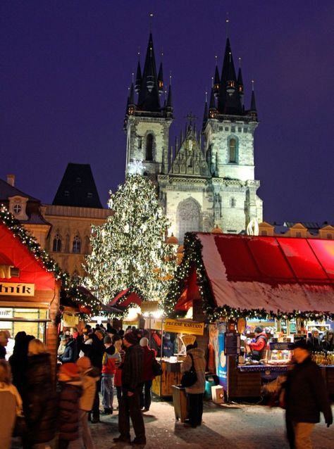 Enjoyable Things To Do In Prague City