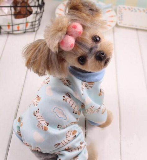 New Soft and Warm dog Pajamas cute pet dog Costume Yorkshire Chihuahua dog clothes for dogs cats  Price: 9.99 & FREE Shipping  #hashtag4