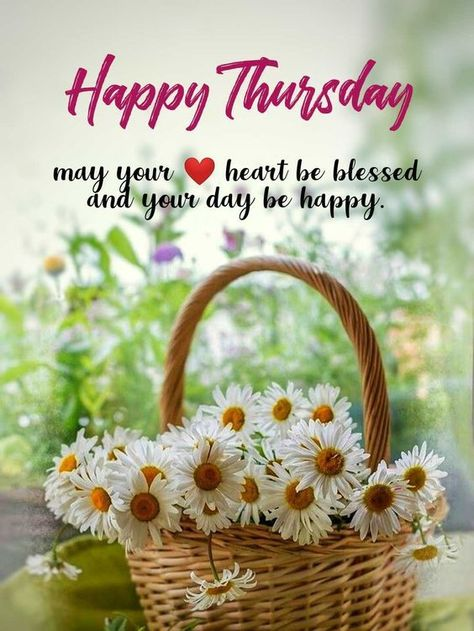 Happy Thursday! May your heart be blessed and your day be happy. #Thursdaymorningwishes #Thursdaypositivequotes #Happythursdayquotes #Thursdayquotesforwork #Goodmorningthursday #Morningthursdayquotes #Morningwishesquotes #Goodmorningwish #Beautifulmorningwishes #Thursdayquotes #Thursdaymorningquotes #Thursdaysayings #Goodmorningquotes #Goodmorningsayings #Positiveenergy #Inspirationalmorningquotes #Inspirationalquotes #Dailyquotes #Everydayquotes #Instaquotes #therandomvibez