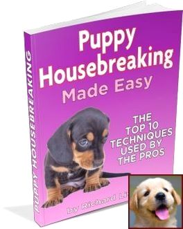 Potty Training Puppy Vinegar And Clicker Training Blind Dogs