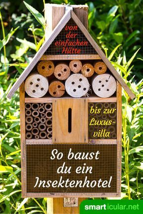 Insektenhotel Richtig Bauen Nicht Nur Deko Sondern Hilfe Fur