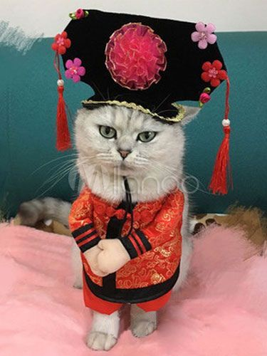 Cat Halloween Costume Satin Chinese Princess Theme Tassel Red Stand On Prank Costume In 2 Pieces Halloween