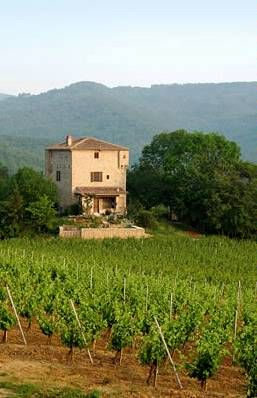 French Chateau with vineyard
