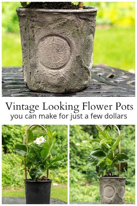 Flower Pots Created By Dressing