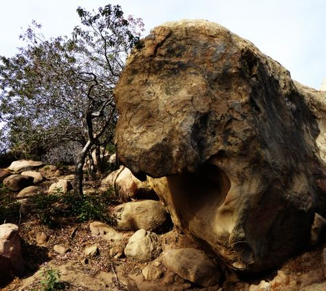 Love how it looks like this rock is shouting.