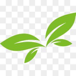 Green Leaf Vector Logo Design Vector Logo Design Logo Design Leaves Vector