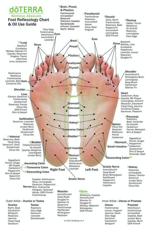 Hand Foot reflexology chart indicating possible essential oil uses for the various hand and feet reflex points Designed to be utilized with doTERRAs essential oils Perfe. Doterra Essential Oils, Young Living Essential Oils, Cedarwood Essential Oil Uses, Peppermint Essential Oil Uses, Frankincense Essential Oil Uses, Helichrysum Essential Oil, Essential Oils For Headaches, Young Living Oils, Essential Oils Massage