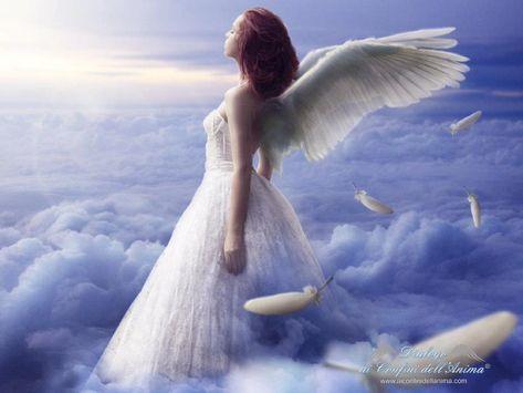 Gli Angeli inviano piume in segno del loro amore - Se stai guardando questo video significa che il tuo Angelo ha un messaggio di amore per te