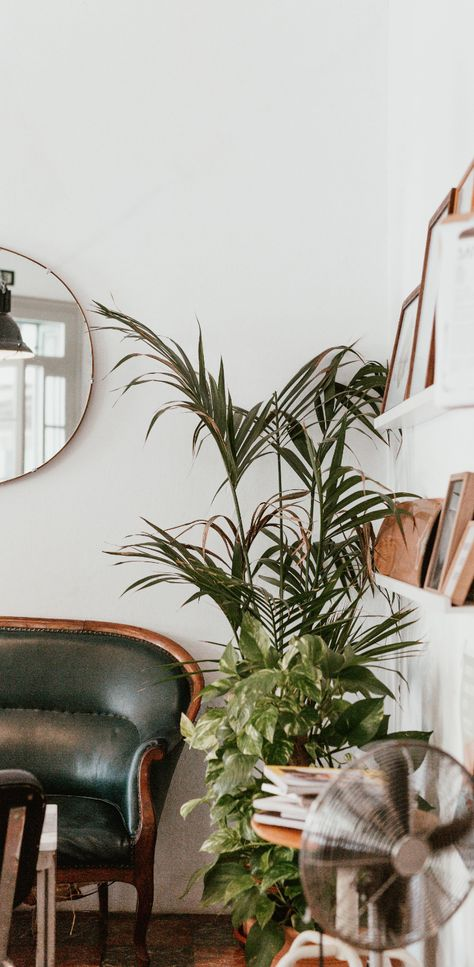 Interesting Ways You Can Bring Nature Home To Spruce Up Your