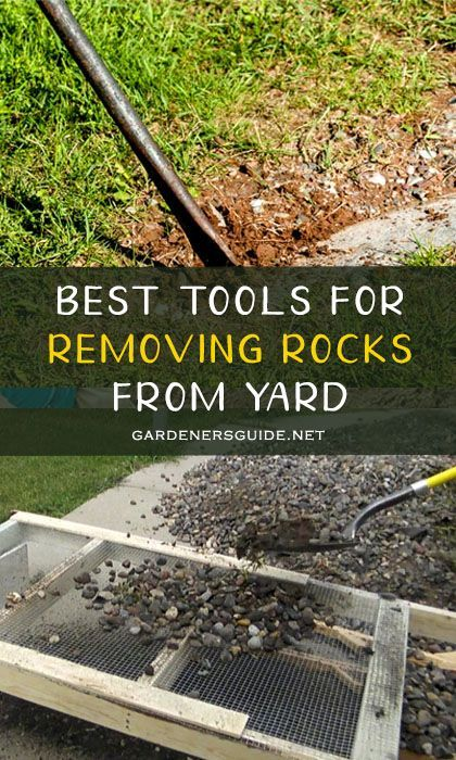 Effectively Remove Rocks From Yard With The Following Steps Yard Organic Gardening Tips Gardening Advice