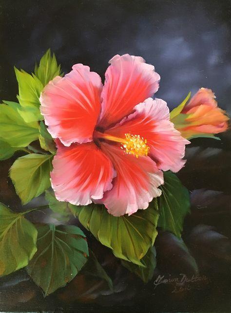 The Pink Hibiscus Oils Over Acrylic Pinturas De Flores Hibisco Pintura Em Tela Flores