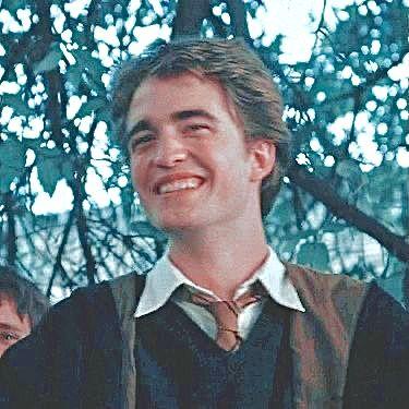 Cedric Diggory Cedric Diggory Harry Potter Harry
