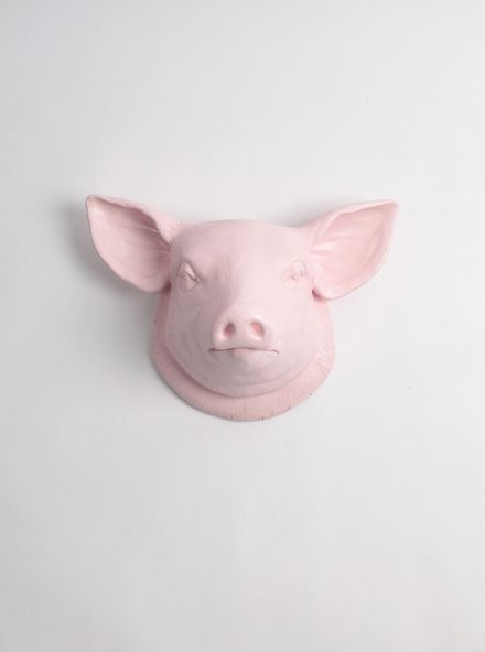 Loading White Faux Taxidermy Pig Decor Pig Kitchen Decor