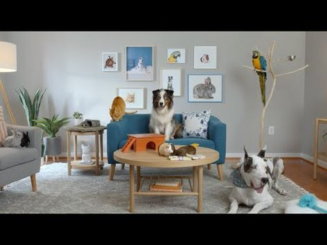 25 Commercial Clips Ideas In 2021 Commercial Christmas Ad Losing A Dog